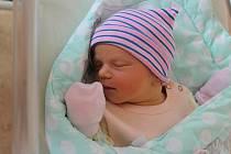 Barbora Matějková (3670 g, 52 cm) se narodila v plzeňské FN 6. srpna v 8:29. Rodiče Vendula a Pavel z Úboče věděli, že se jim narodí holčička. Na sestřičku čekala Magdalénka (6) a Julinka (4).