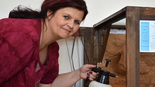 O EXOTICKÉ žabky pralesničky se stará Jarmila Kánská a když zrovna nemá moc času, pomůžou ji dva proškolení pracovníci.