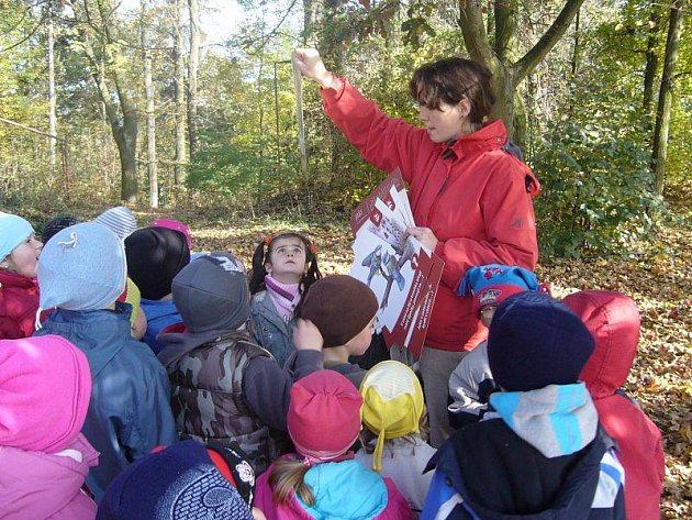 Nejen děti se mohou hodně naučit o cohraně životnío prostředí.