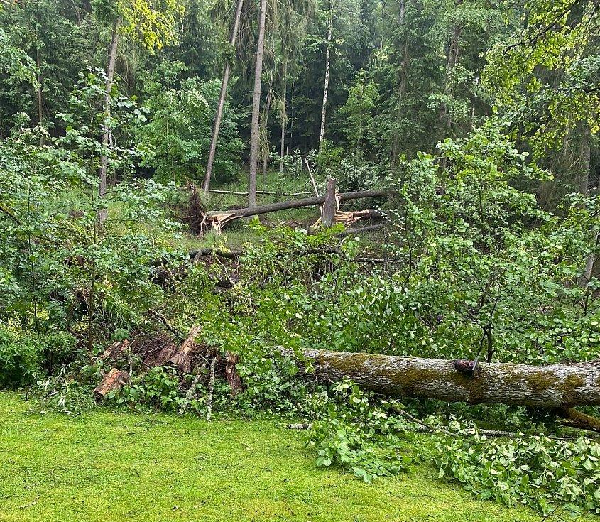 Následky sobotní bouřky u osady Zliv na Tachovsku.
