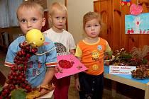 Slavnosti padajícího listí uspořádali v mateřince v Chodové Plané. Děti vytvářely  z listí a podzimních plodů Podzimníčky, které zdobí chodbu školky.