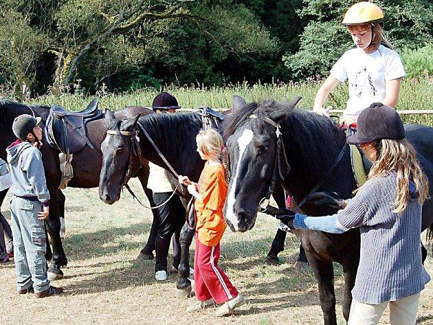 Svojšínští táborníci se učili na koních nejen jezdit, na programu byla také péče o ustájení zvířat. Děti se musely hlavně o koně umět postarat.