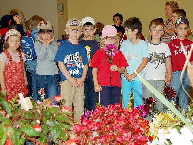 Z výstavy květin v  Tachově.