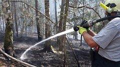 U Pňovan hořelo několik hektarů lesa.