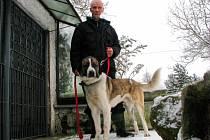 MAX MĚL HLÍDAT VELKÝ PROSTOR. Zatím je ale v psím penzionu a čeká na nového pána. Ten by měl mít zkušenosti s chovem psů. Na snímku Max s dočasným majitelem Ivanem Houfem.