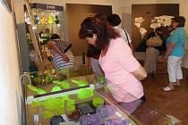 Návštěvníci mohou obdivovat například zářící flakony z uranitového skla.