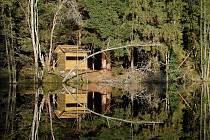 Naučná stezka Vodní svět nabídne v Českém lese i pozorovatelnu bobrů.