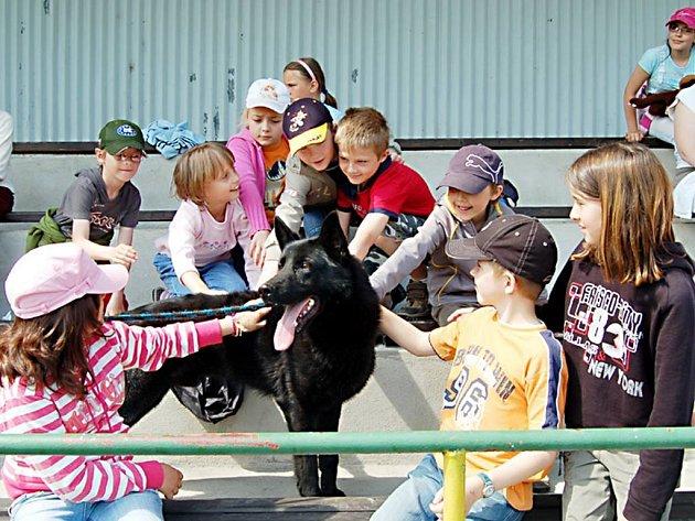 Služební německý ovčák Ajax má děti rád. Přesvědčili se o tom také žáci ze Základní školy v Chodové Plané (na snímku).
