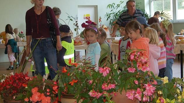 Dalším kritériem kostelecké soutěže Vesnice roku bude také například zahradní výzdoba. (Ilustrační foto.)