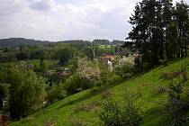 Jaro na stráních u Michalových Hor.