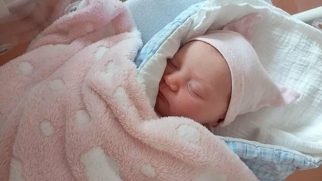 Sára Šilhavá z Tupadel u Klatov se narodila vklatovské porodnici 21. července v11:31 hodin (3760 g, 51 cm) rodičům Evě a Radkovi.