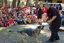 Ukázka výcviku služebních psů si od bonětických táborníků vysloužila velké ovace. To byl však jenom zlomek toho, co se děti o práci policie dozvěděly.