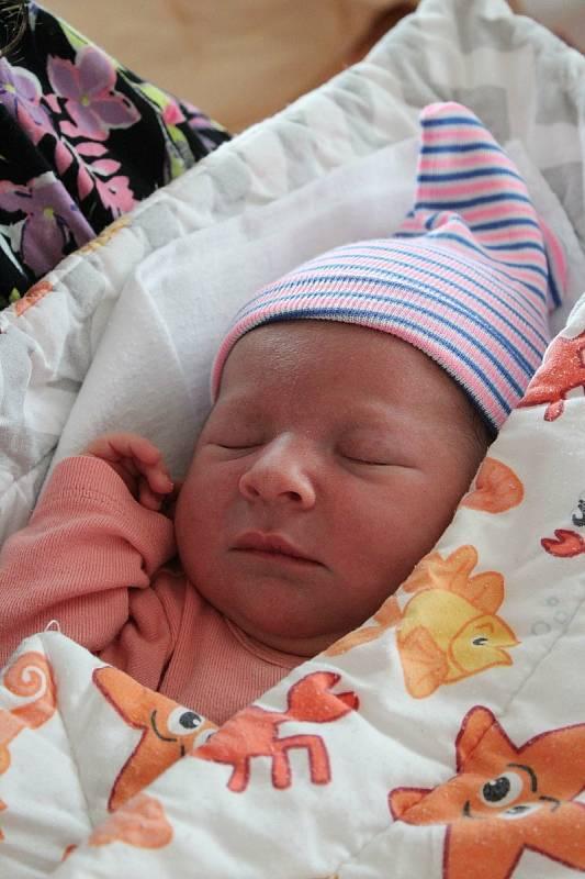 Markéta Sušírová (3260 g, 49 cm) se narodila 28. července v 11:44 ve Fakultní nemocnici v Plzni. Rodiče Šárka a Bohuslav z Horních Polžic věděli dopředu, že bude mít prvorozený Bohoušek (6) sestřičku.