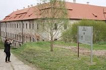 NOVĚ OTEVŘENÁ jižní zahrada kladrubského kláštera nabízí návštěvníkům netradiční pohled na jižní křídlo areálu.