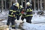 Tachovští hasiči odstranili větrem pokácený strom na silnici mezi Lesnou a Starou Knížecí Hutí.