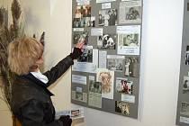 V muzeu vystavuje SPOZ Tachov