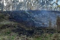 Mezi Blahousty a Trpísty hořelo tři čtvrtě hektaru lesa.
