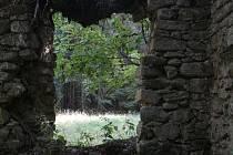 Ruiny Hedvičiny pily u Zlatého Potoka a její okolí.