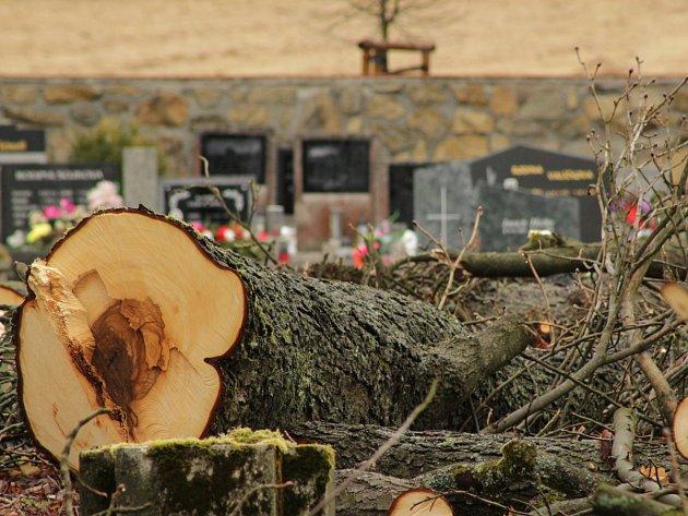 Původní německá část hřbitova v Hošťce se letos dočká revitalizace.