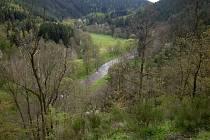 Střípky z vegetace a květeny údolí Mže