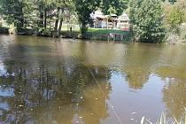Dron, který se utopil ve Mži nenašel ani policisty přivolaný potapěč.