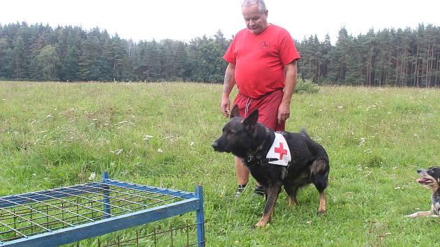 Karel Bobál s Charusem a jeho psími kamarády při výcviku.