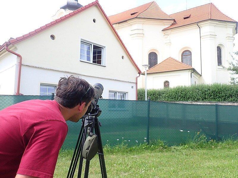 Čápi v Černošíně vyvolali pozdvižení