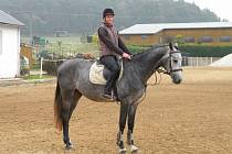 HLAVNÍ CENOU letošního ročníku Svatováclavského derby bude tento kůň. Jmenuje se Freedom a na snímku je zachycen s jezdkyní Lenkou Šmehlíkovou Adamovou.