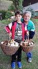 Houby rostou také na Stříbrsku. Foto:Vlaďka Tolarová
