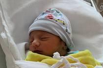 Brian Botoš (2490 g, 45 cm) se narodil 16. října v 15:35 hodin v plzeňské Fakultní nemocnici Lochotín. Rodiče Veronika a David z Plané u M. Lázní věděli dopředu, že jejich prvorozeným miminkem bude kluk.
