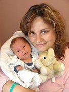 Daně a Václavu Holubovým z Těchlovic se 12. dubna deset minut před pátou hodinou ranní narodil ve FN v Plzni prvorozený syn Dominik (3,20 kg/53 cm). Dana Melichárová přinesla do porodnice svému prvorozenému vnoučeti malé slůně.