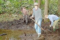 BUDUJÍ TŮNĚ. Studenti tachovského gymnázia pomáhali ve středu s budováním přirozeného prostředí obojživelníkům u tachovské Minerálky.