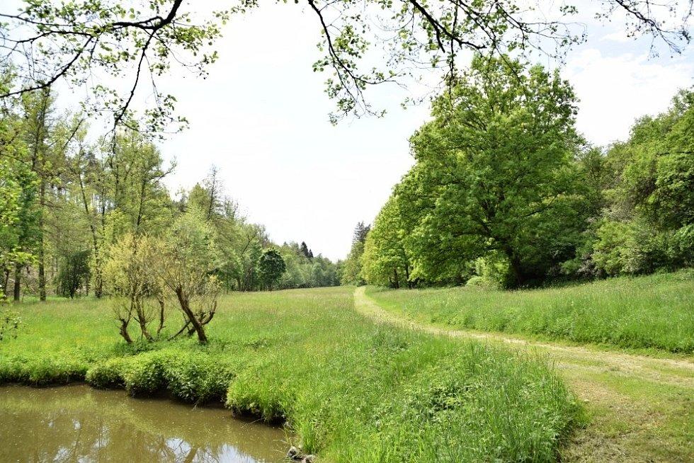 Výprava částí známé Svatojakubské cesty od Stříbra po Milevo.