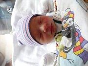 Vojtěch Kamínek se narodil 8. listopadu ve 2:42 mamince Lence a tatínkovi Miroslavovi z Boru u Tachova. Po příchodu na svět v plzeňské FN vážil bráška dvouletého Jakuba 3545 gramů a měřil 51 cm.