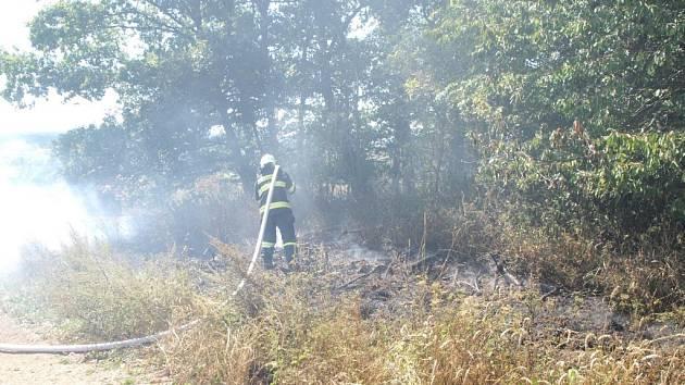 Požár likvidovaly jednotky z Tachova.