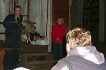 Klášter v Kladrubech hostil noční živočichy.