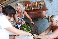 Do várky zimního speciálu v pivovaru v Chodové Plané putoval čerstvý zelený chmel.