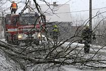 Ze zásahu dobrovolných hasičů u Zadního Chodova.