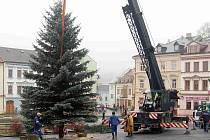 Zaměstnanci komunálních služeb vztyčili v pondělí vánoční strom na tachovském náměstí.