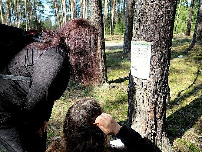 Na naučné stezce u Sulislavi se konala stopovačka.