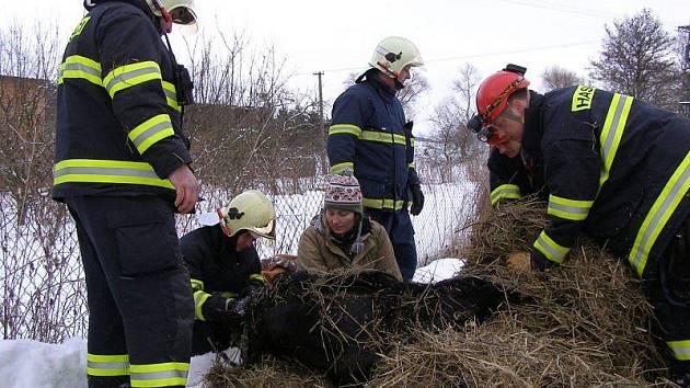 Ve Slavicích spadl jedenáctiletý valach do studny. Přes veškerou snahu hasičů zahynul.