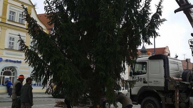 Vánoční strom ve Stříbře