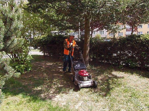 NAPILNO při sekání trávy mají v těchto dnech pracovníci Správy majetku města Stříbra.