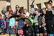 Ukázky dravců a sov v letu i při lovu mohly vidět děti mateřinky.