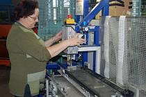 Třetinu dělníků výroby tvoří ve firmě Ideal Automotive agenturní pracovníci. Mezi nimi je i Maria Pastuška (na snímku). Ani ona, pokud si své úkoly plní svědomitě, se propuštění bát nemusí.