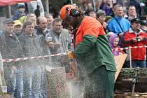 Dřevorubci měli připraveno na pomyslné dráze několik úkonů, v nichž předvedli svoji zručnost.