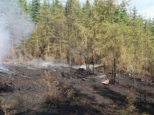 POŽÁR zasáhl v úterý odpoledne u Broumova přibližně třicet arů lesního porostu.