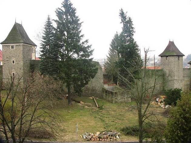Sedm stromů rostoucích u hradeb v tachovské Zámecké ulici muselo před lety padnout stejně jako keře Svídy.