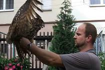 Celkem čtyřikrát se s výrem velkým v rozmezí deseti let setkal ornitolog Karel Makoň ze Záchranné stanice živočichů Plzeň. Třikrát mu zachránil život, po čtvrté se mu to už nepodařilo.