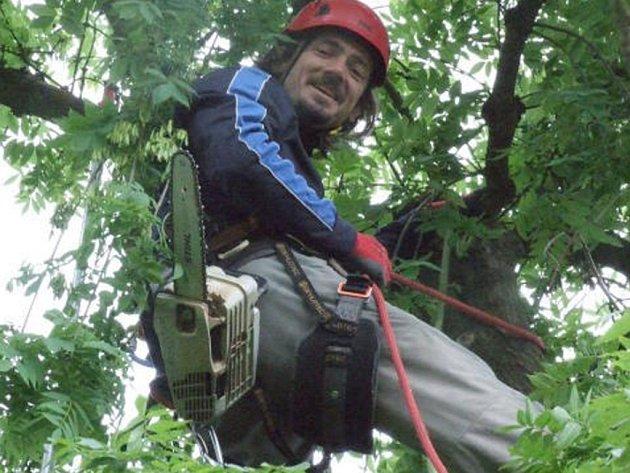 ARBORISTA Zdeněk používá profesionální techniku a bezpečnostní jištění. Výšková práce je nebezpečná.
